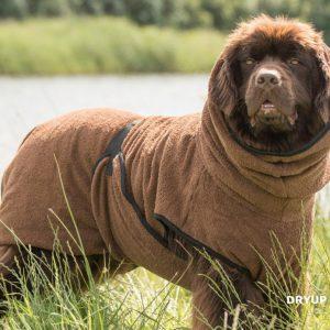 Dryup-cape-braun-maxi-hund-bademantel