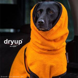 Dryup-cape-clementine-bademantel-hund-orange