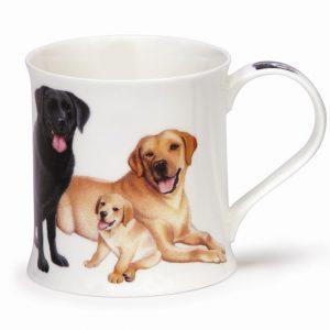 dunoon-dogs-puppies-labrador-spaniel