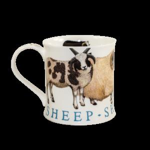 Dunoon-wessex-farm-animlas-sheep-kaffee-tee