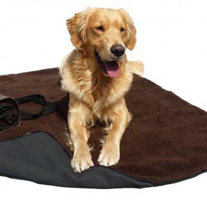 Warmup blanket-big-decke-hund