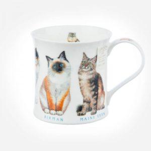 Wessex-show-cats-main coon-perser-kaffe-tee-mug
