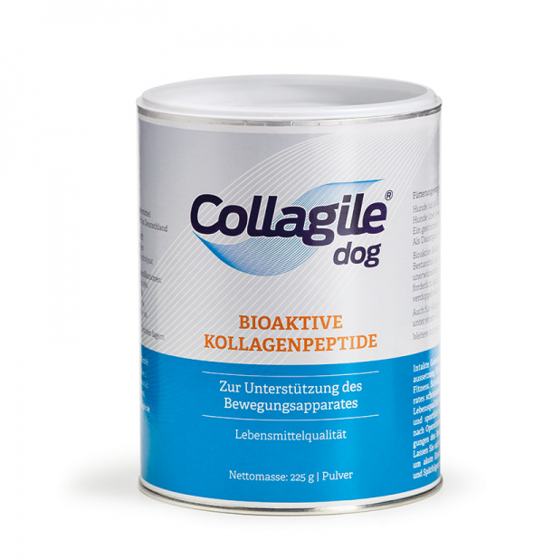Collagile-Hund-Collagen-Gesundheit-Bewegung-Lebensfreude-Lebensqualität