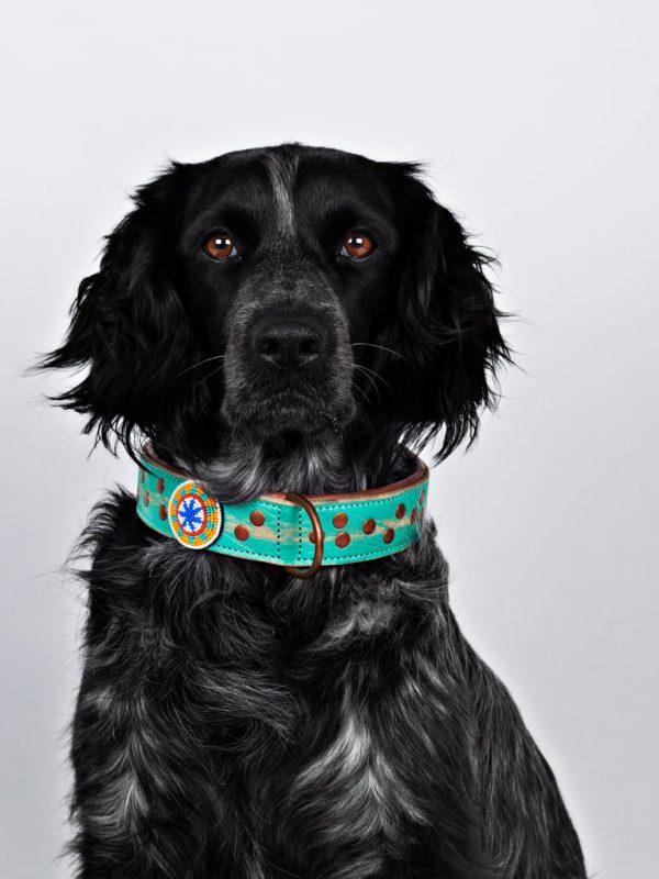 DWAM, Dog with a mission, Halsband, Hundehalsband, Leder, Hippie, Boho, Ibiza, Avalon, tuerkis, Perlen