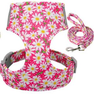 Geschirr-Hundegeschirr-Gstaeltli-Brustgeschirr-Blumen-Margeriten-romantisch-blumig-Hund-Hundeliebhaber-Leine-pink-weiss-gelb.JPG