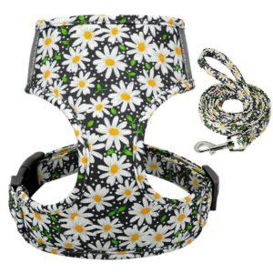 Geschirr-Hundegeschirr-Gstaeltli-Brustgeschirr-Blumen-Margeriten-romantisch-blumig-Hund-Hundeliebhaber-Leine-schwarz-weiss-gelb.JPG