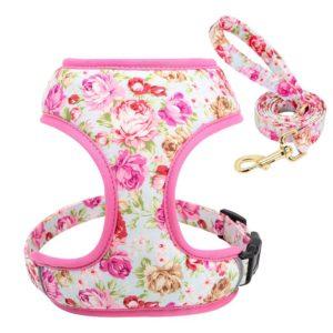 Geschirr-Hundegeschirr-Gstaeltli-Brustgeschirr-Blumen-rosen-pink-vintage-Hund-Hundeliebhaber-Leine.