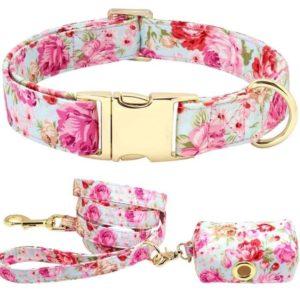 Halsband-Hundehalsband-Blumen-rosen-pink-vintage-Hund-Hundeliebhaber-Leine-Gassibeutel.JPG