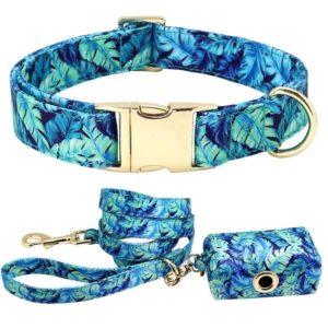 Hundeleine-Hundehalsband-Halsband-Federn-blau-vintage-Hund-Hundeliebhaber-Leine-Gassibeutel.JPG