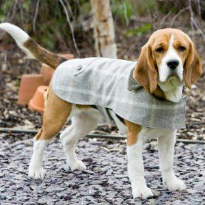 Hundemantel-Tweed-Mutts and Hounds-kuschlig-warm-Slate.jpg