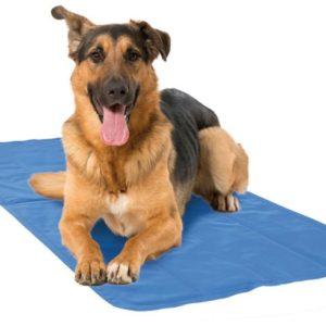 Kühlmatte-Cooling Mat-Hund-Hitze-Hitzeschutz-Katze-Pfoetli Shop-blau-Gesundheit