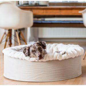 Pfoetli-Shop-BUDDELNEST-Hundebett_Dogspring-eckiges Hundebett-fake fur-Hundetraeume-qualität-Maul Ledermanufaktur-beige