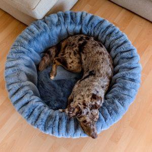 Pfoetli-Shop-BUDDELNEST-Hundebett_Dogspring-eckiges-Hundebett-fake-fur-Hundetraeume-qualität-Maul-Ledermanufaktur-blau