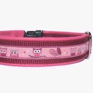 Pfoetli-Shop-Halsband-Hundehalsband-Leder-Clickverschluss-Borte-Eulen-rosa-pink