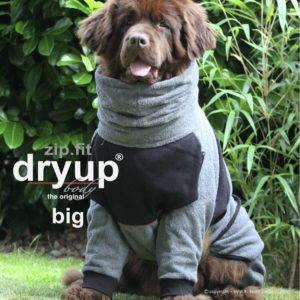 dryup-body-zip-fit-Trocknungsmantel-Hundebademantel-Hund-Auto-grey-big